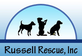 Link to Russell Rescue
